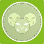 Koogar Consultancy Coaching & Mentoring Logo